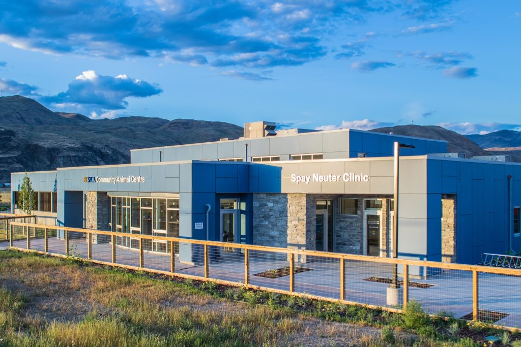Read more on SPCA Kamloops – Grand Opening